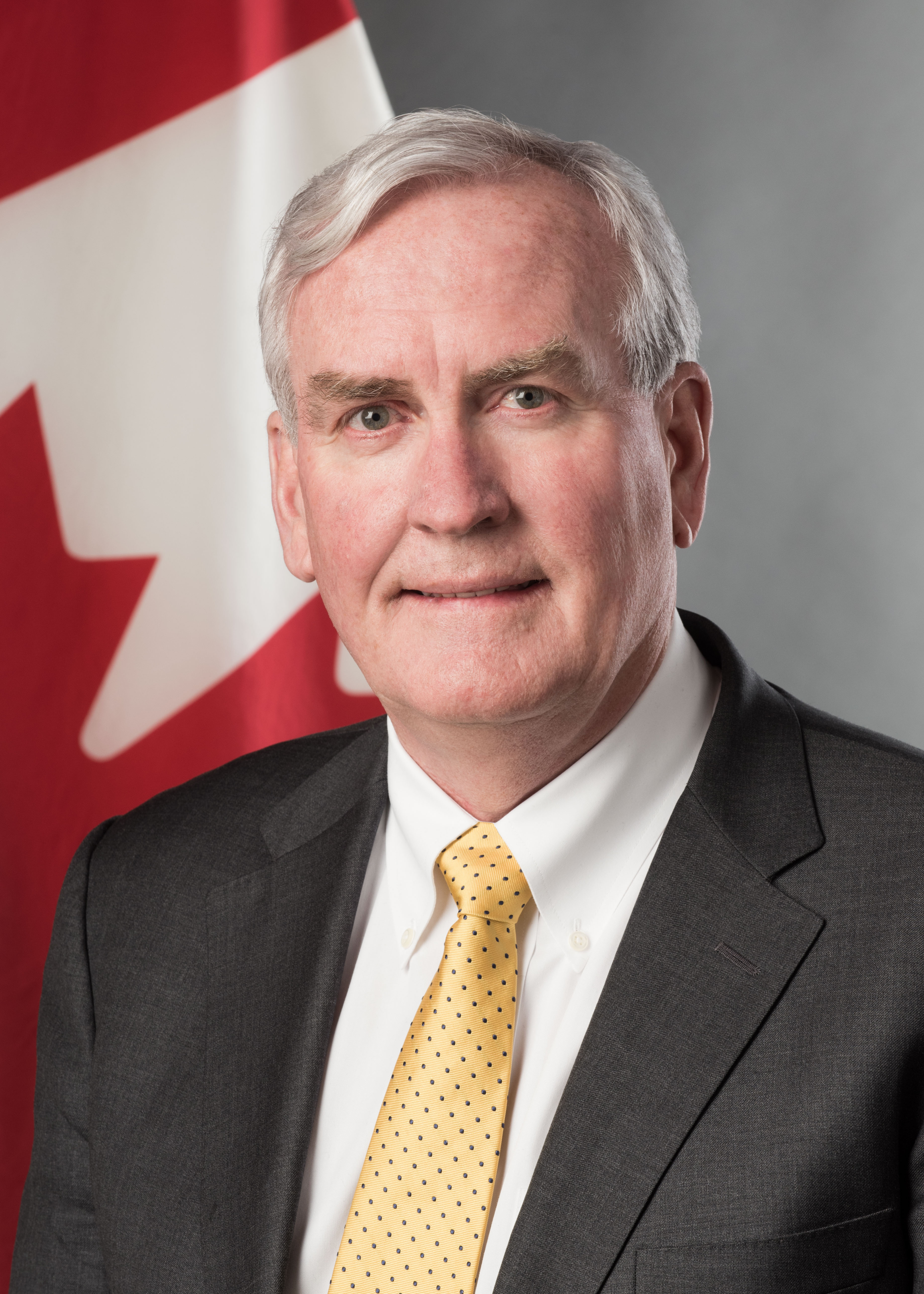 Kevin Michael Vickers, Ambassador of Canada to Ireland