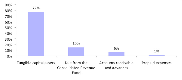 Figure 3: Asset breakdown