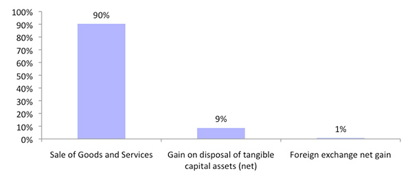 Figure 6: Revenue breakdown
