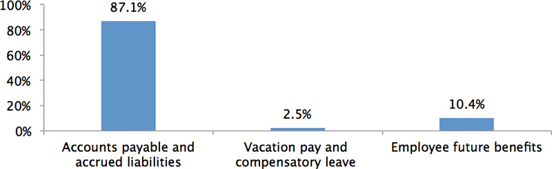 Figure 4: Liability Breakdown
