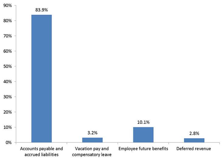 Chart of liability Breakdown
