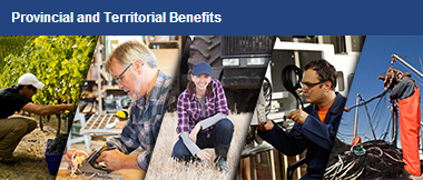 Provincial and Territorial Benefits