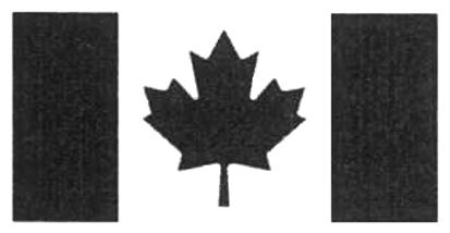 Le symbole du drapeau