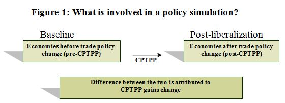 Figure 1: What is involved in a policy simulation?