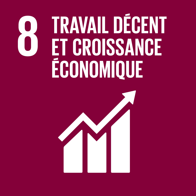 Objectif 8 – Le travail décent et la croissance économique