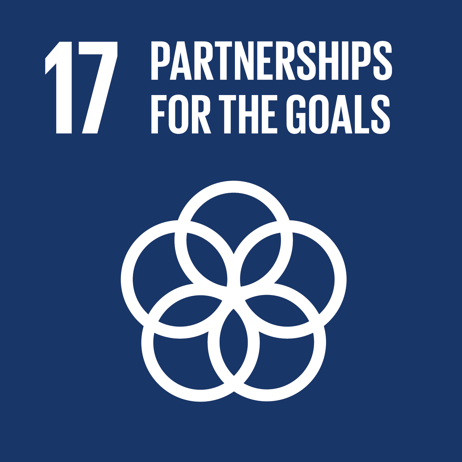 Goal 17 – Partnerships for the Goals