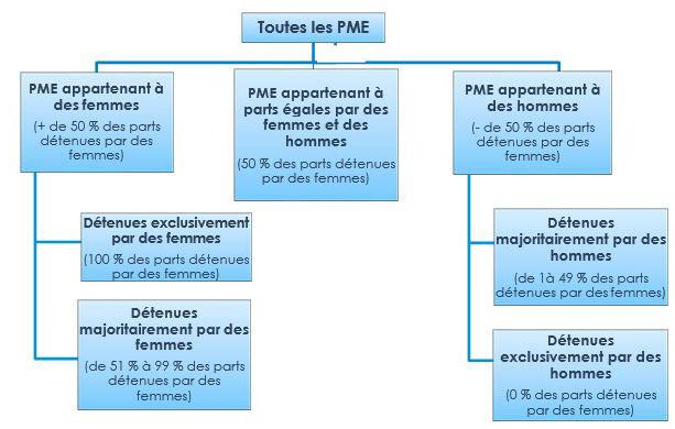 Boîte 1 – Définitions des catégories de propriétaires de PME par genre