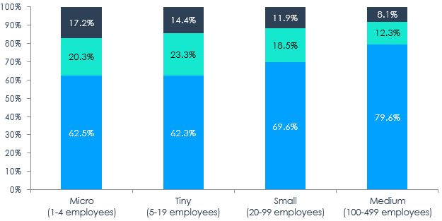 Figure 4 – Distribution of Gender of Ownership of SMEs by Enterprise Size, 2017