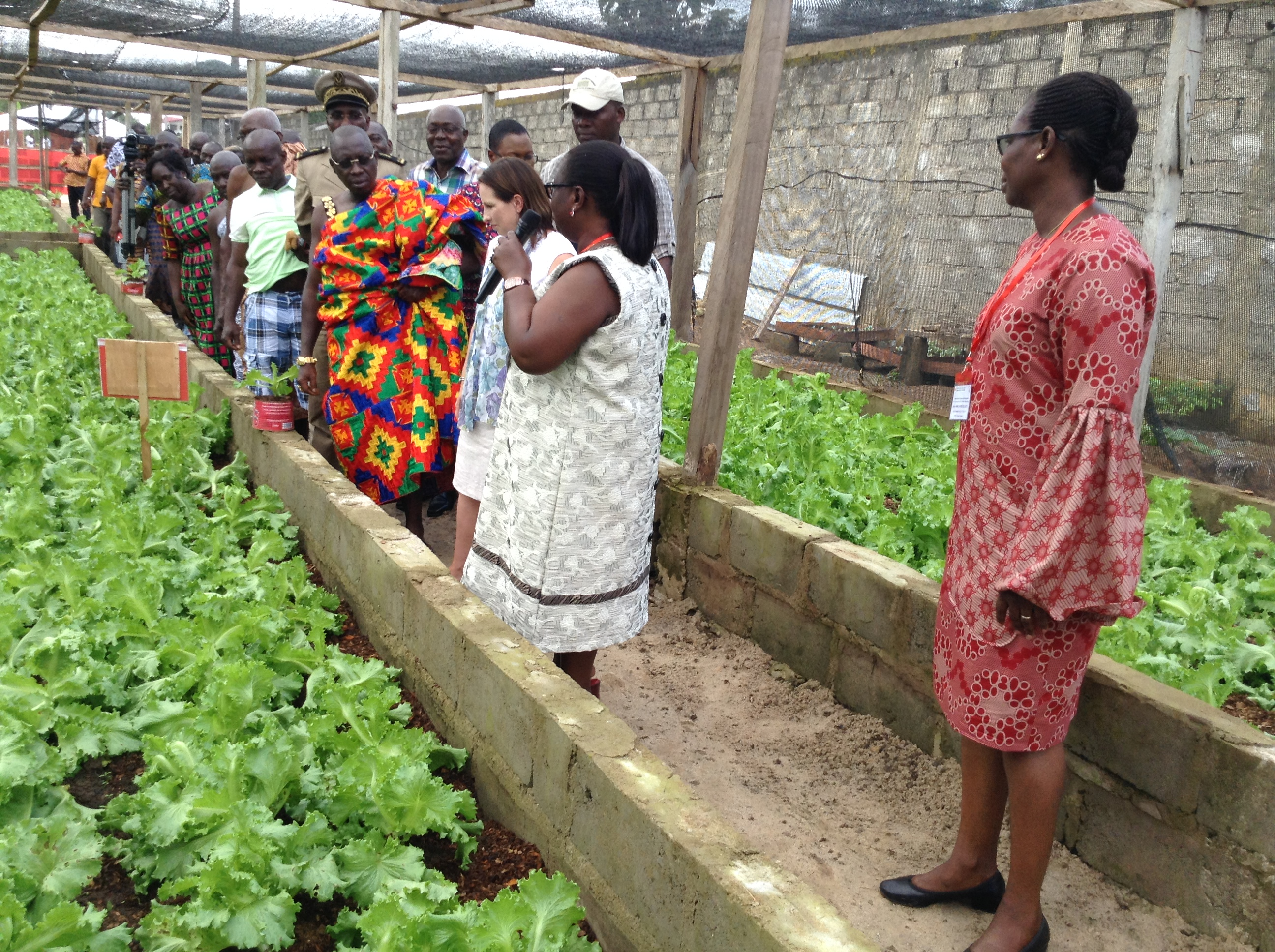 Ambassador Shouldice visits a new plot of hydroponic farming land with Michelle Morokro from La Pierre Angulaire in Côte d'Ivoire. Credit: Global Affairs Canada