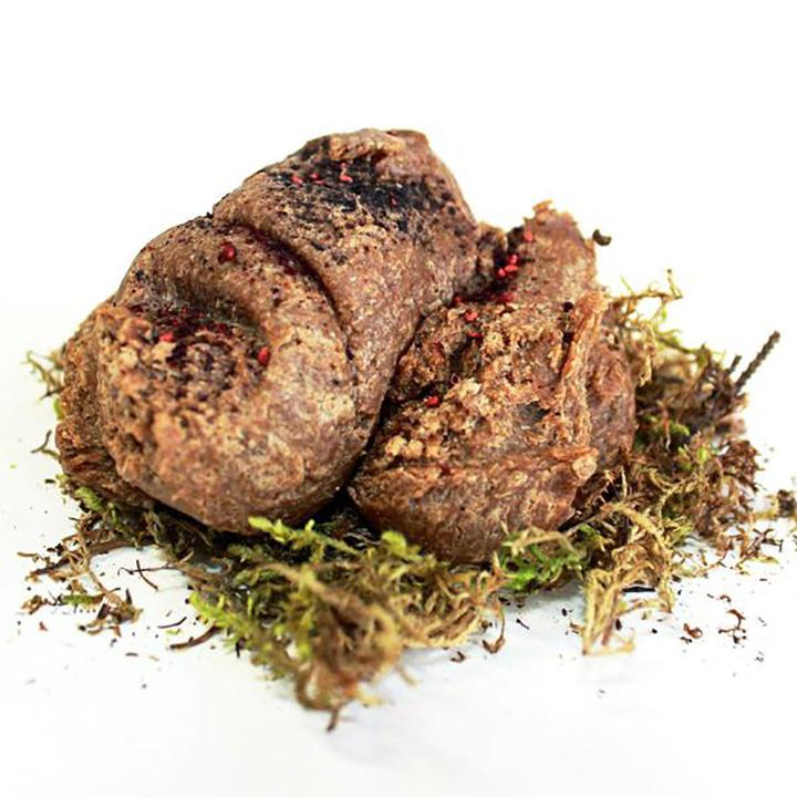 Savon Bear poop de Laughing Lichen