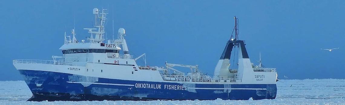 L'immense potentiel de la pêche nordique du Canada dans les marchés asiatique et européen
